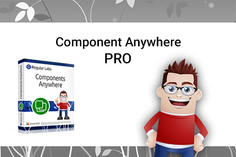 components-anywhere-pro